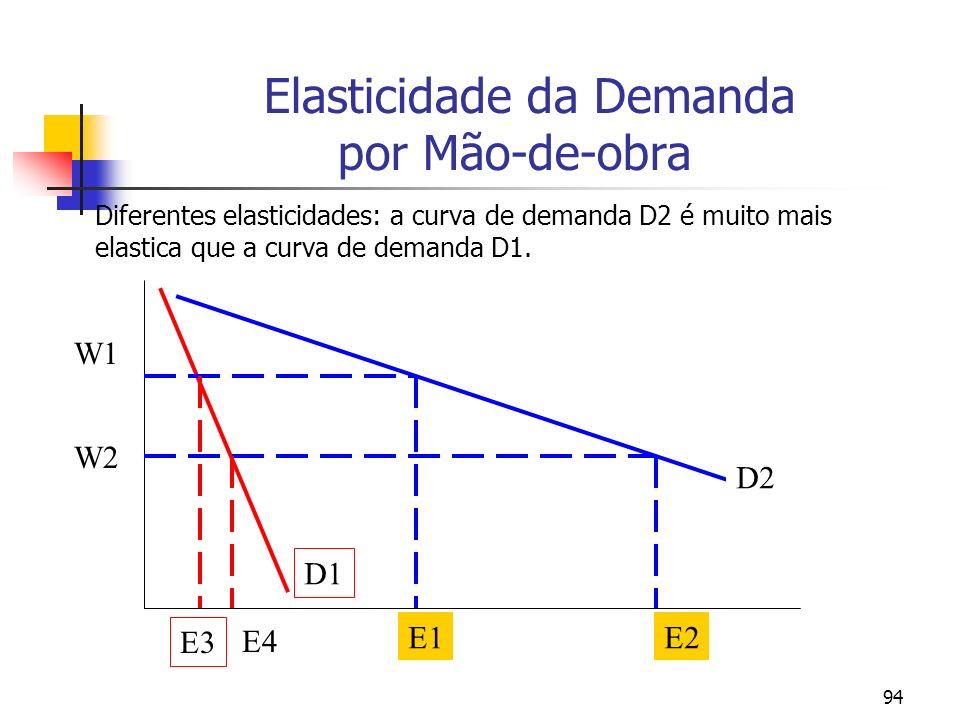 94 Elasticidade da Demanda por Mão-de-obra Diferentes elasticidades: a curva de demanda D2 é muito mais elastica que a curva de demanda D1. D1 D2 W1 W