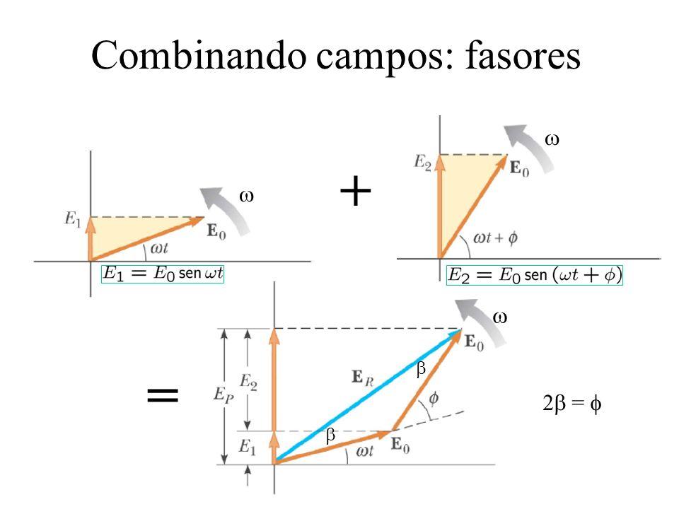 Combinando campos: fasores + = E 2 =