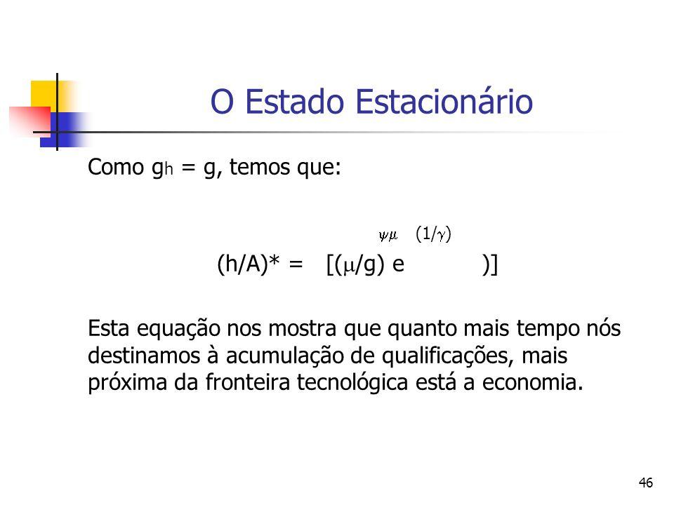 46 O Estado Estacionário Como g h = g, temos que: (1/ ) (h/A)* = [( /g) e )] Esta equação nos mostra que quanto mais tempo nós destinamos à acumulação