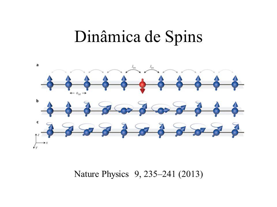 Dinâmica de Spins Nature Physics 9, 235–241 (2013)