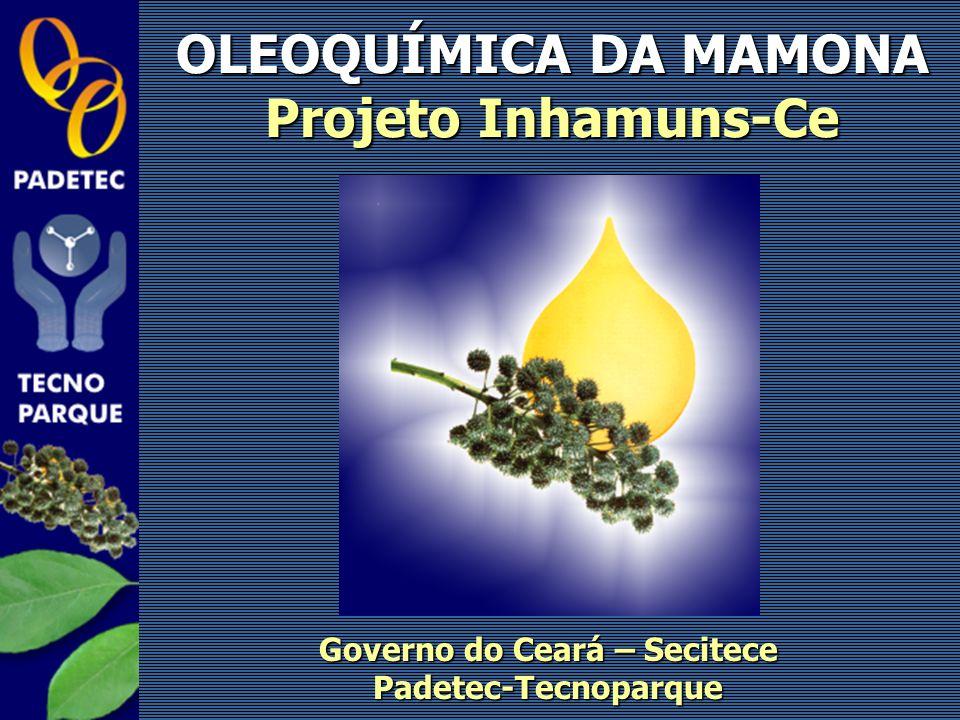 OLEOQUÍMICA DA MAMONA Projeto Inhamuns-Ce Governo do Ceará – Secitece Padetec-Tecnoparque