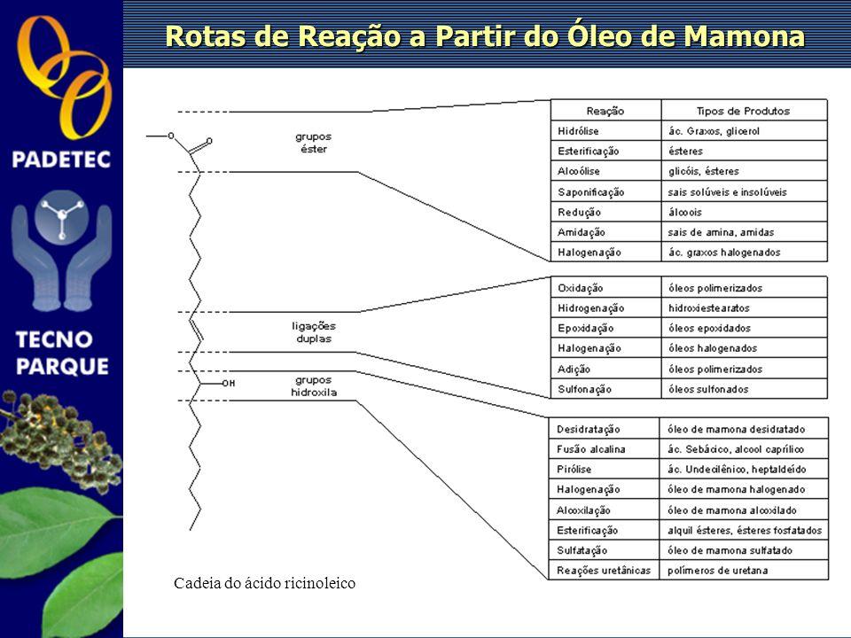 Cadeia do ácido ricinoleico Rotas de Reação a Partir do Óleo de Mamona