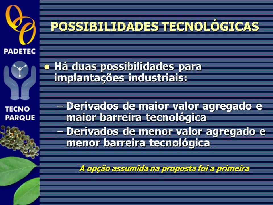 POSSIBILIDADES TECNOLÓGICAS Há duas possibilidades para implantações industriais: Há duas possibilidades para implantações industriais: –Derivados de