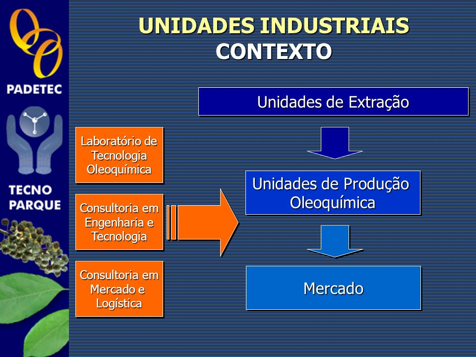 UNIDADES INDUSTRIAIS CONTEXTO Unidades de Extração Unidades de Produção Oleoquímica Oleoquímica MercadoMercado Laboratório de TecnologiaOleoquímica Te