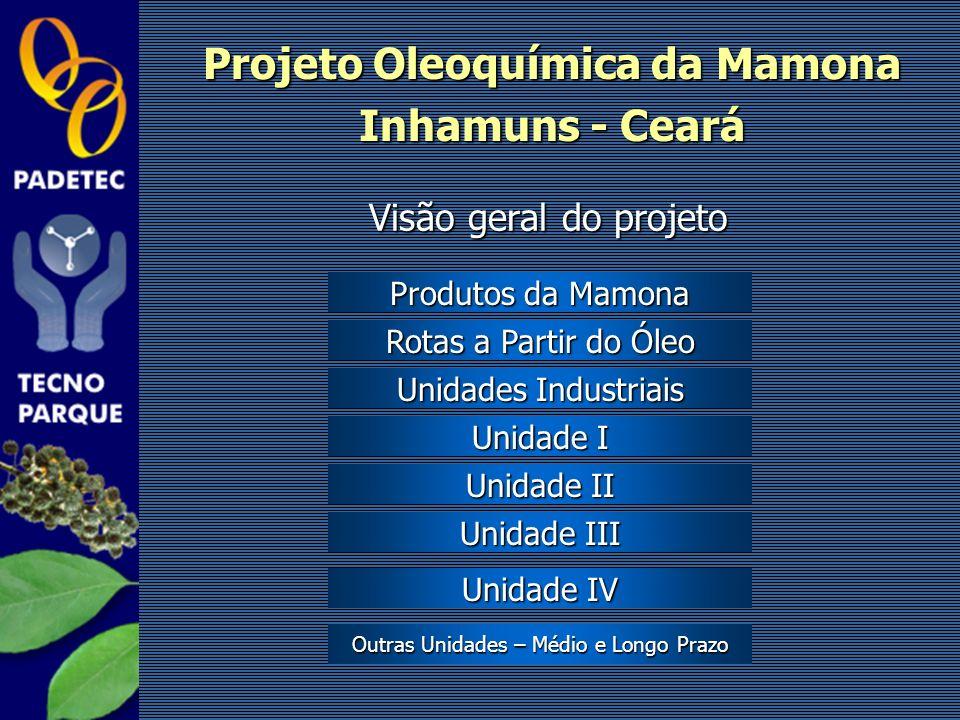 Visão geral do projeto Projeto Oleoquímica da Mamona Inhamuns - Ceará Produtos da Mamona Produtos da Mamona Rotas a Partir do Óleo Rotas a Partir do Ó
