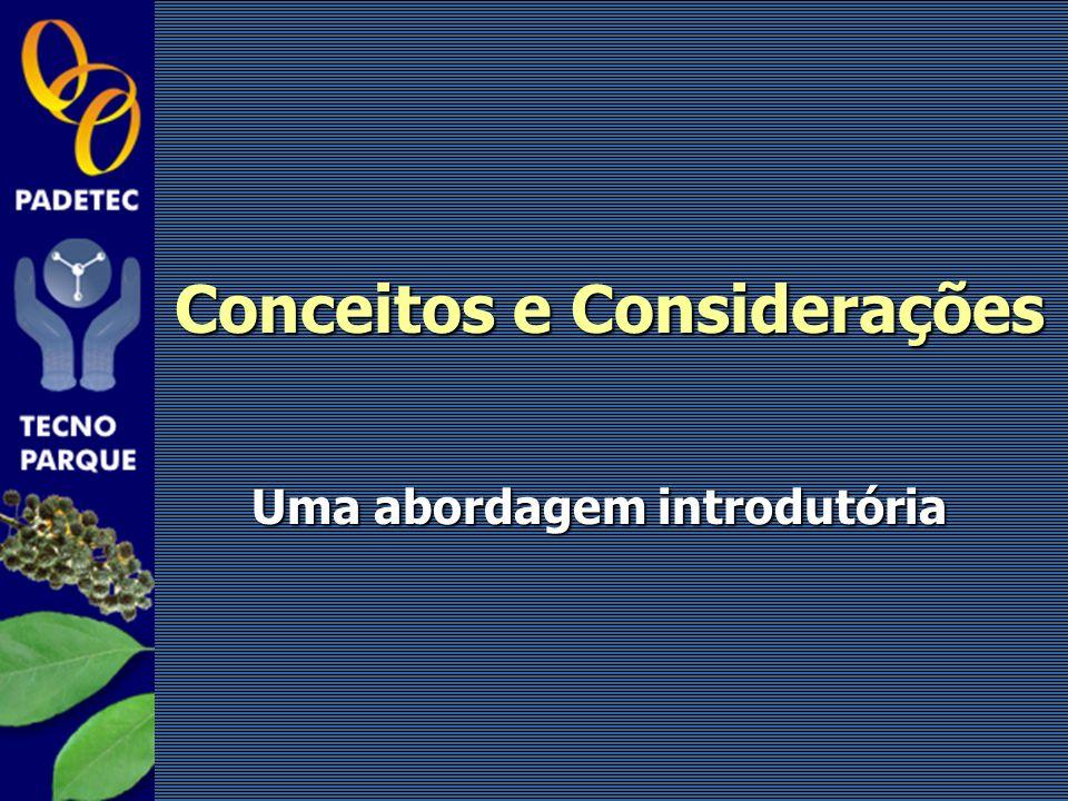 Conceitos e Considerações Uma abordagem introdutória