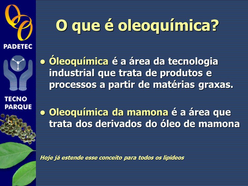 O que é oleoquímica? Óleoquímica é a área da tecnologia industrial que trata de produtos e processos a partir de matérias graxas. Óleoquímica é a área
