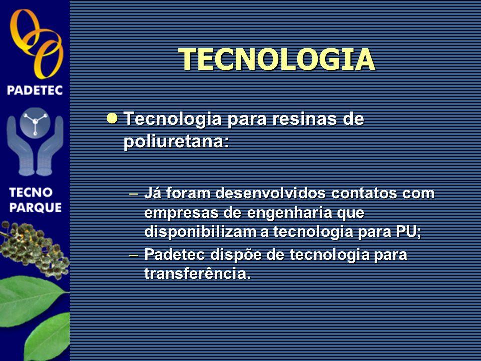 Tecnologia para resinas de poliuretana: Tecnologia para resinas de poliuretana: –Já foram desenvolvidos contatos com empresas de engenharia que dispon