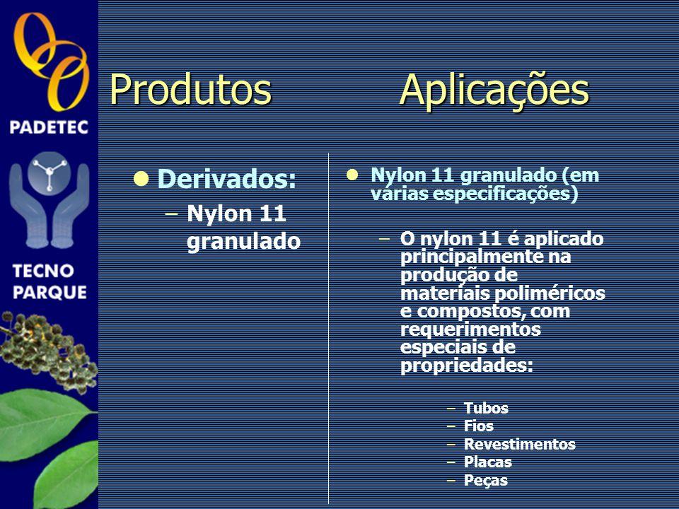 Derivados: –Nylon 11 granulado Nylon 11 granulado (em várias especificações) –O nylon 11 é aplicado principalmente na produção de materiais polimérico