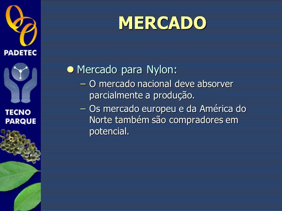 Mercado para Nylon: Mercado para Nylon: –O mercado nacional deve absorver parcialmente a produção. –Os mercado europeu e da América do Norte também sã