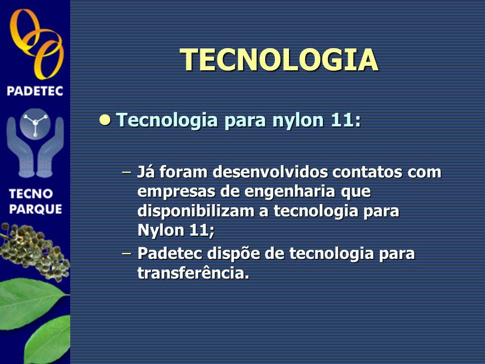 Tecnologia para nylon 11: Tecnologia para nylon 11: –Já foram desenvolvidos contatos com empresas de engenharia que disponibilizam a tecnologia para N