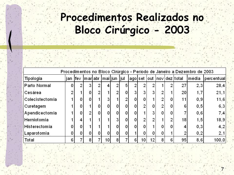 8 Procedimentos Realizados no Bloco Cirúrgico - 2004