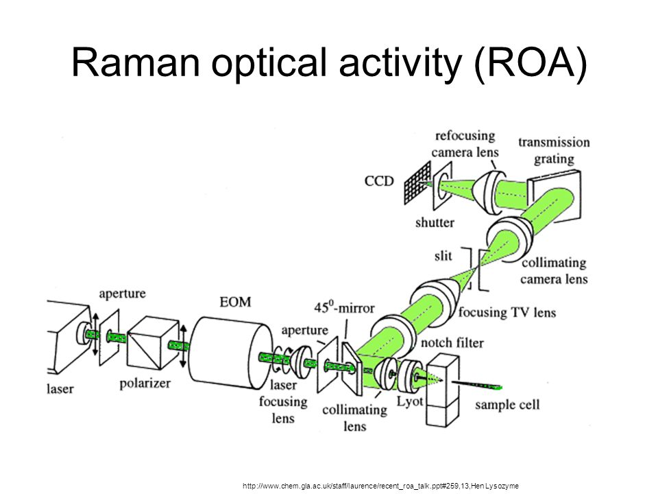 Raman optical activity (ROA) http://www.chem.gla.ac.uk/staff/laurence/recent_roa_talk.ppt#259,13,Hen Lysozyme