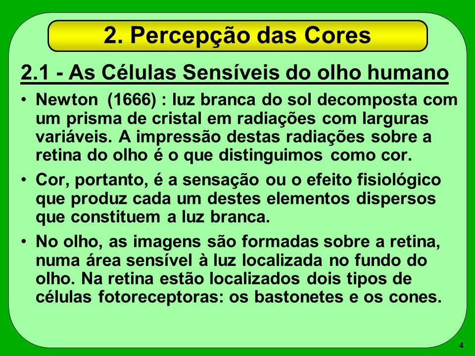 4 2. Percepção das Cores 2.1 - As Células Sensíveis do olho humano Newton (1666) : luz branca do sol decomposta com um prisma de cristal em radiações