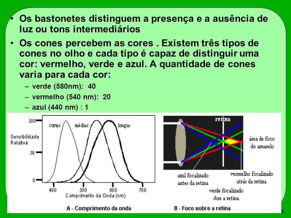 5 Os bastonetes distinguem a presença e a ausência de luz ou tons intermediários Os cones percebem as cores. Existem três tipos de cones no olho e cad