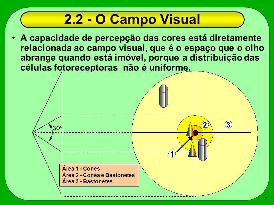 7 2.2 - O Campo Visual A capacidade de percepção das cores está diretamente relacionada ao campo visual, que é o espaço que o olho abrange quando está