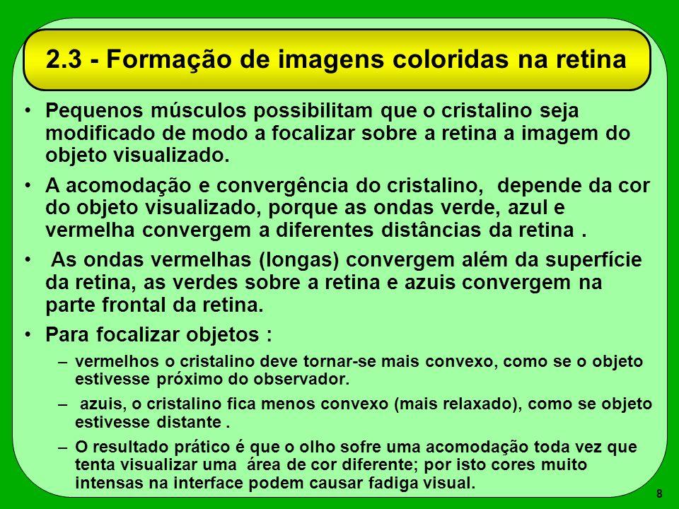 8 2.3 - Formação de imagens coloridas na retina Pequenos músculos possibilitam que o cristalino seja modificado de modo a focalizar sobre a retina a i