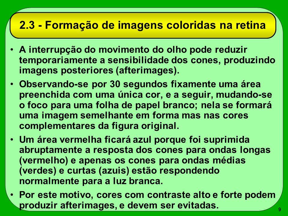 9 A interrupção do movimento do olho pode reduzir temporariamente a sensibilidade dos cones, produzindo imagens posteriores (afterimages). Observando-