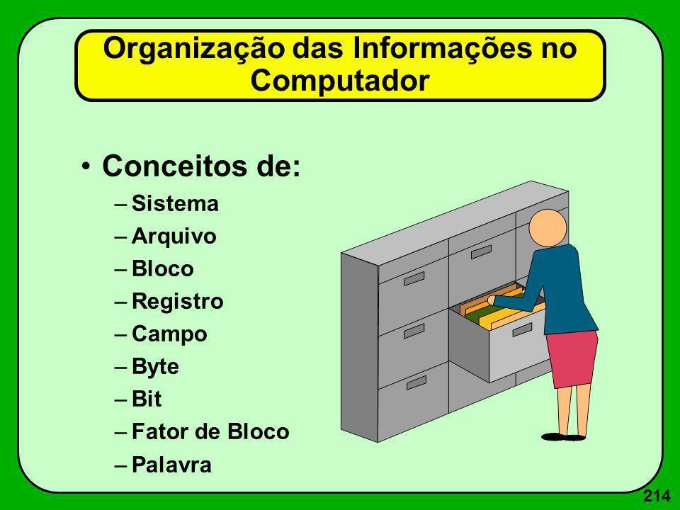 214 Organização das Informações no Computador Conceitos de: –Sistema –Arquivo –Bloco –Registro –Campo –Byte –Bit –Fator de Bloco –Palavra