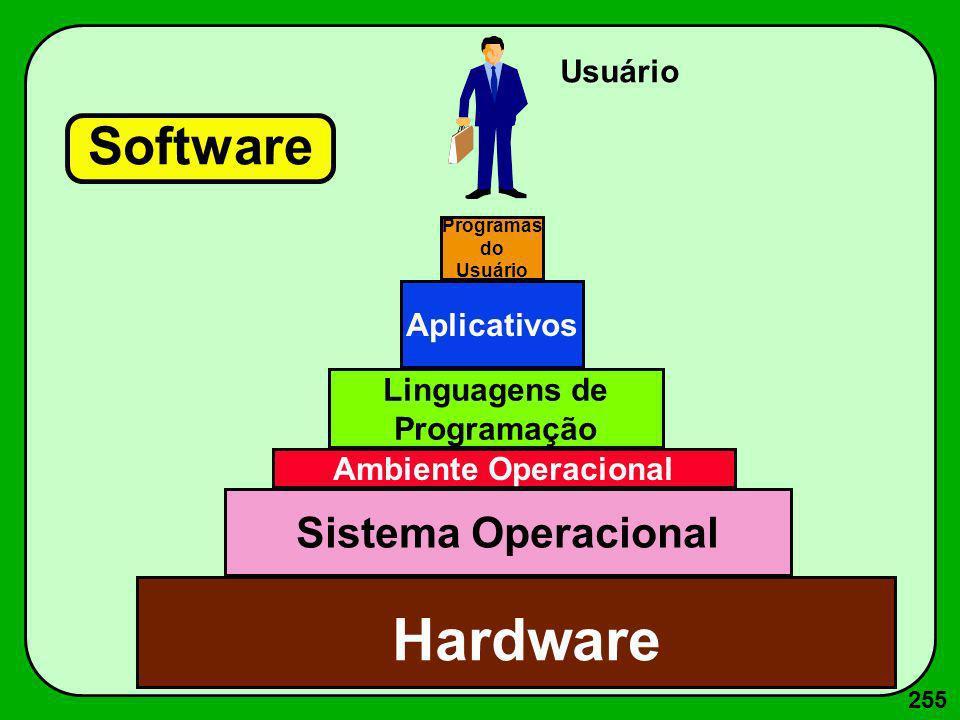 255 Software Sistema Operacional Ambiente Operacional Linguagens de Programação Aplicativos Hardware Programas do Usuário