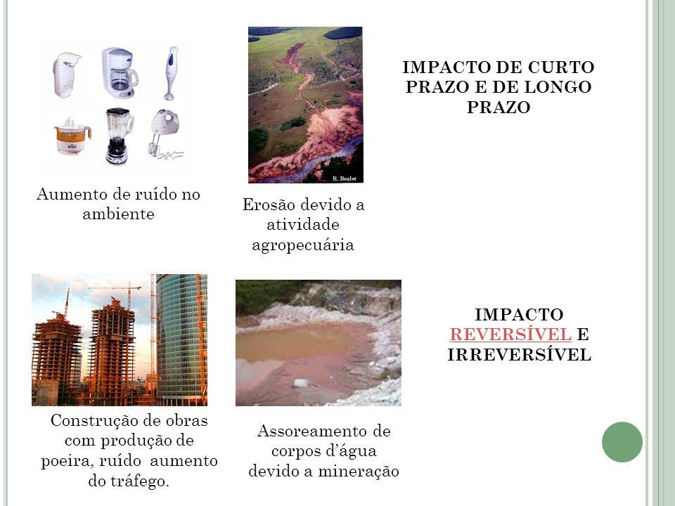 Aumento de ruído no ambiente Erosão devido a atividade agropecuária IMPACTO DE CURTO PRAZO E DE LONGO PRAZO Construção de obras com produção de poeira
