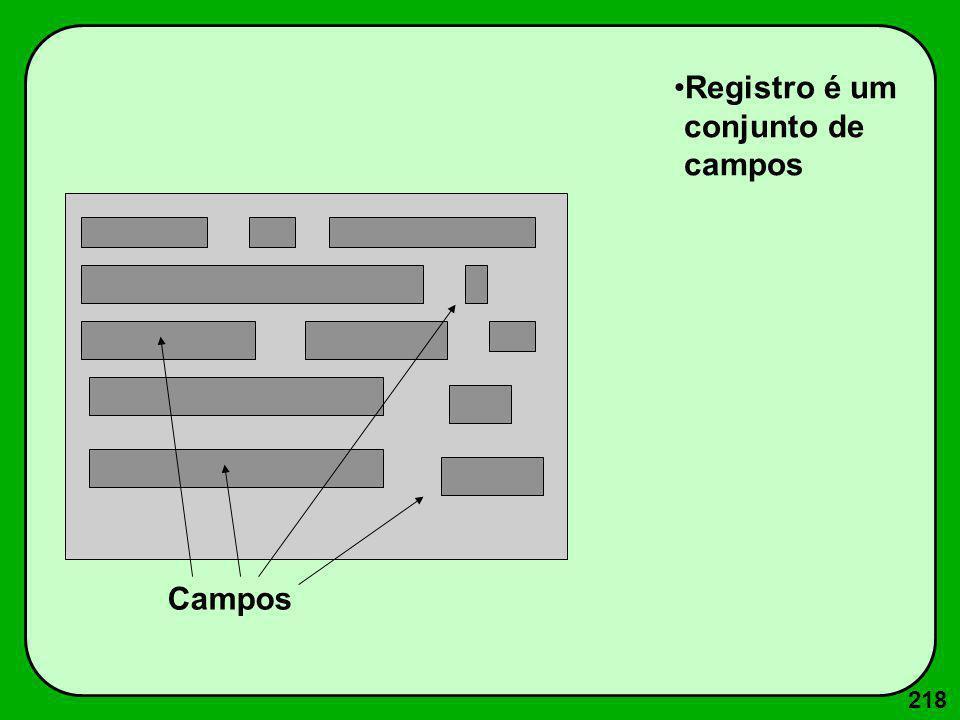 218 Campos Registro é um conjunto de campos