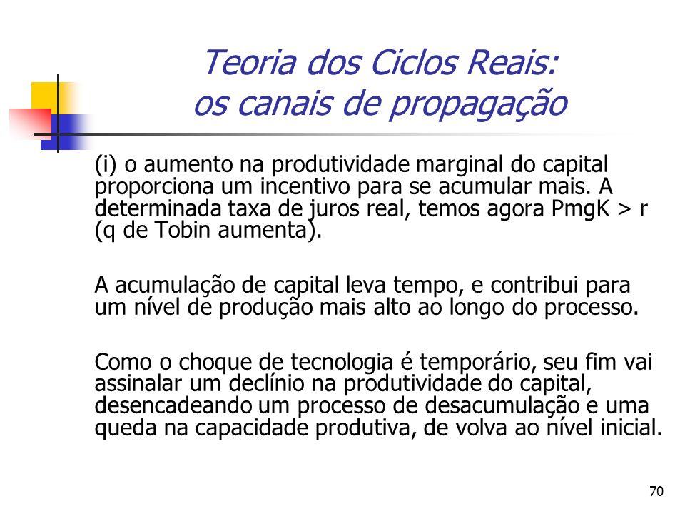 70 Teoria dos Ciclos Reais: os canais de propagação (i) o aumento na produtividade marginal do capital proporciona um incentivo para se acumular mais.