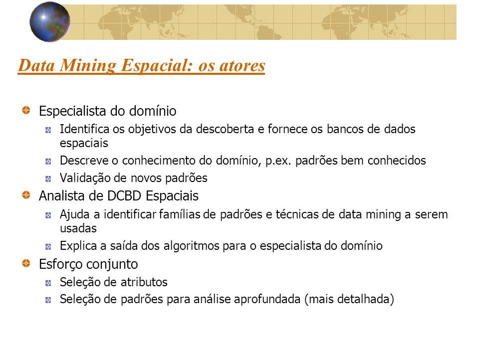 Data Mining Espacial: os atores Especialista do domínio Identifica os objetivos da descoberta e fornece os bancos de dados espaciais Descreve o conhecimento do domínio, p.ex.