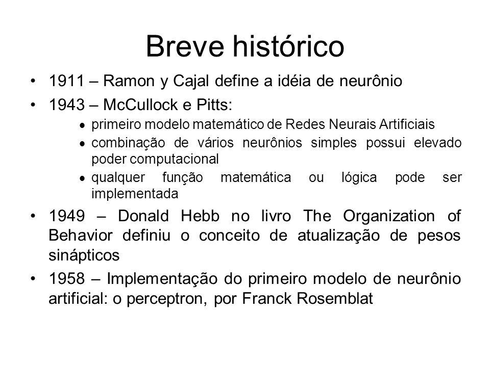 Breve histórico 1911 – Ramon y Cajal define a idéia de neurônio 1943 – McCullock e Pitts: primeiro modelo matemático de Redes Neurais Artificiais comb