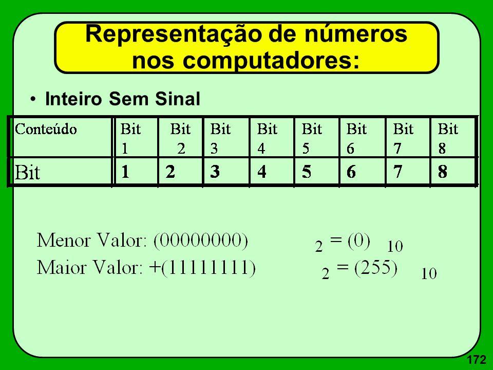 172 Inteiro Sem Sinal Representação de números nos computadores: