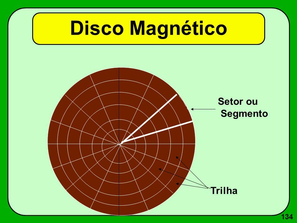 134 Disco Magnético Setor ou Segmento Trilha