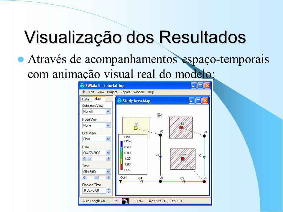Visualização dos Resultados Através de acompanhamentos espaço-temporais com animação visual real do modelo;