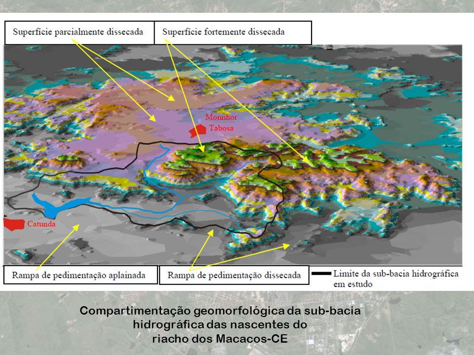 Compartimentação geomorfológica da sub-bacia hidrográfica das nascentes do riacho dos Macacos-CE