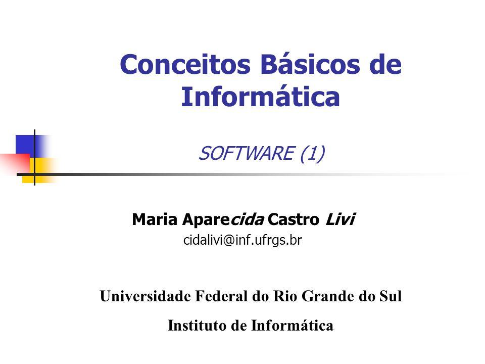 Maria Aparecida Castro Livi cidalivi@inf.ufrgs.br Universidade Federal do Rio Grande do Sul Instituto de Informática Conceitos Básicos de Informática