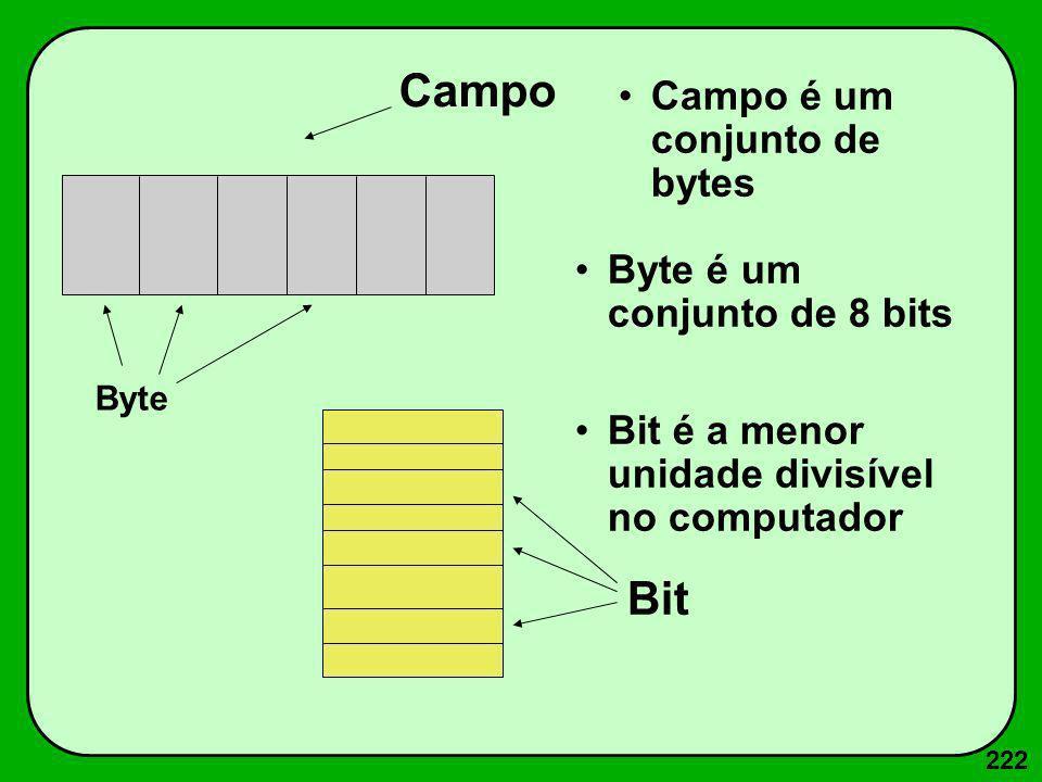 222 Byte é um conjunto de 8 bits Bit é a menor unidade divisível no computador Byte Campo Bit Campo é um conjunto de bytes
