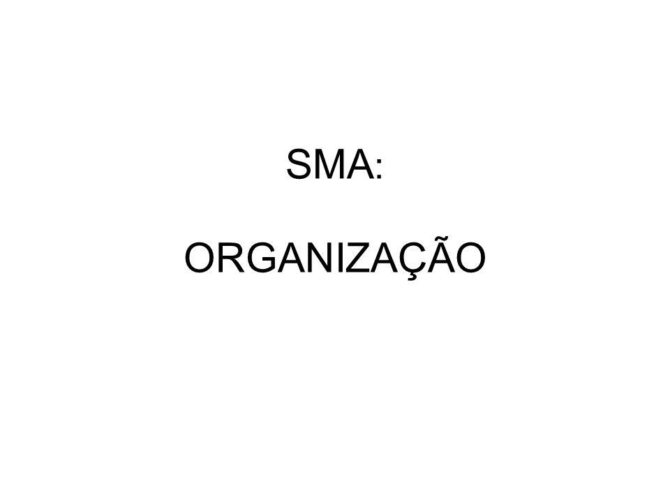 SMA : ORGANIZAÇÃO