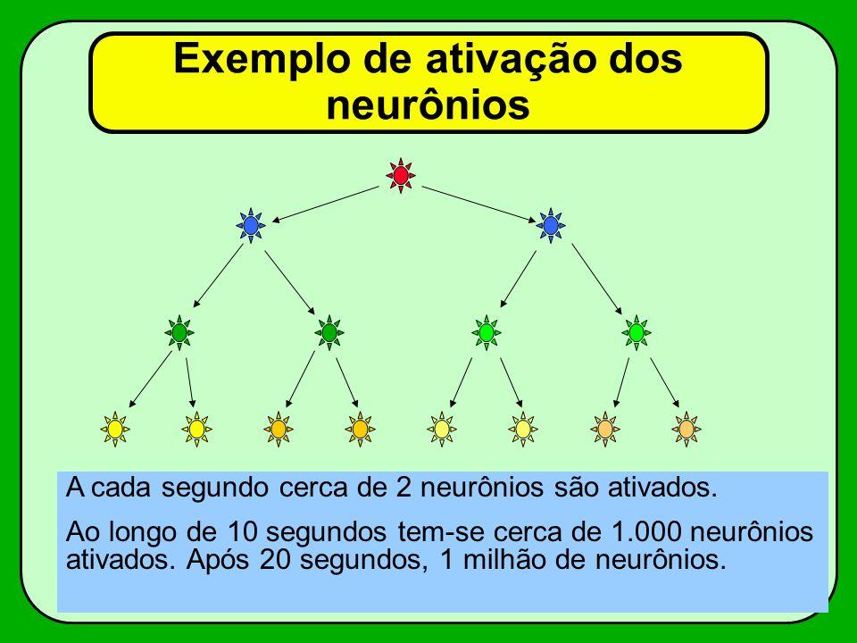 Exemplo de ativação dos neurônios A cada segundo cerca de 2 neurônios são ativados. Ao longo de 10 segundos tem-se cerca de 1.000 neurônios ativados.