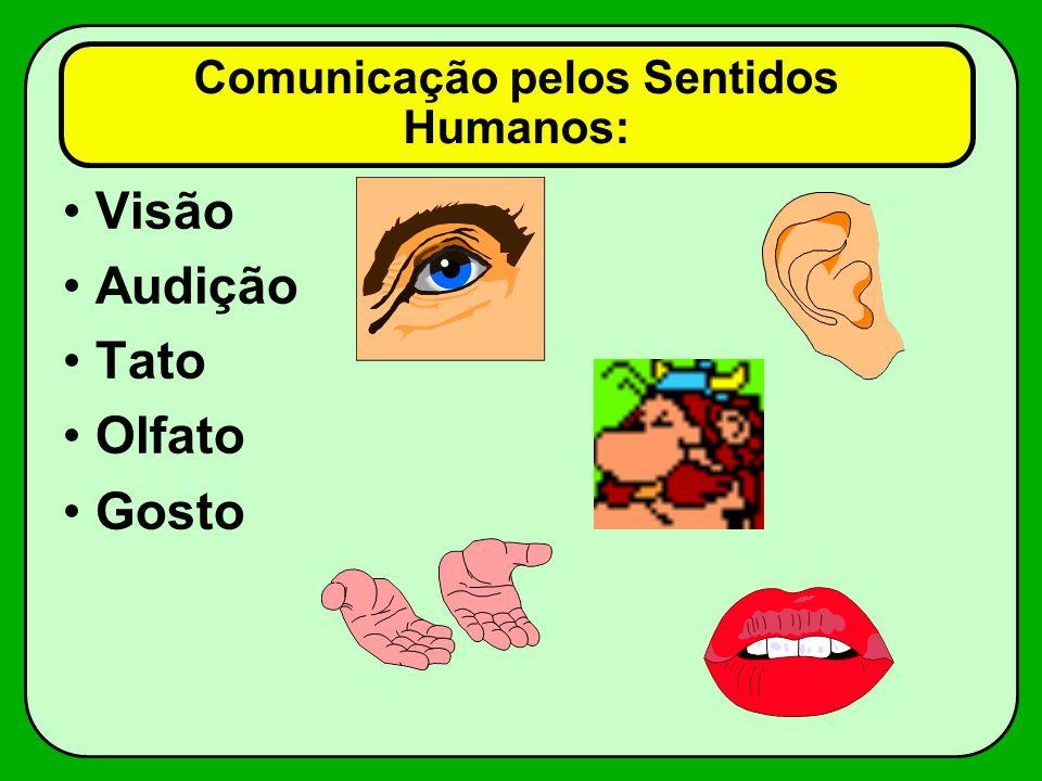 Comunicação pelos Sentidos Humanos: Visão Audição Tato Olfato Gosto