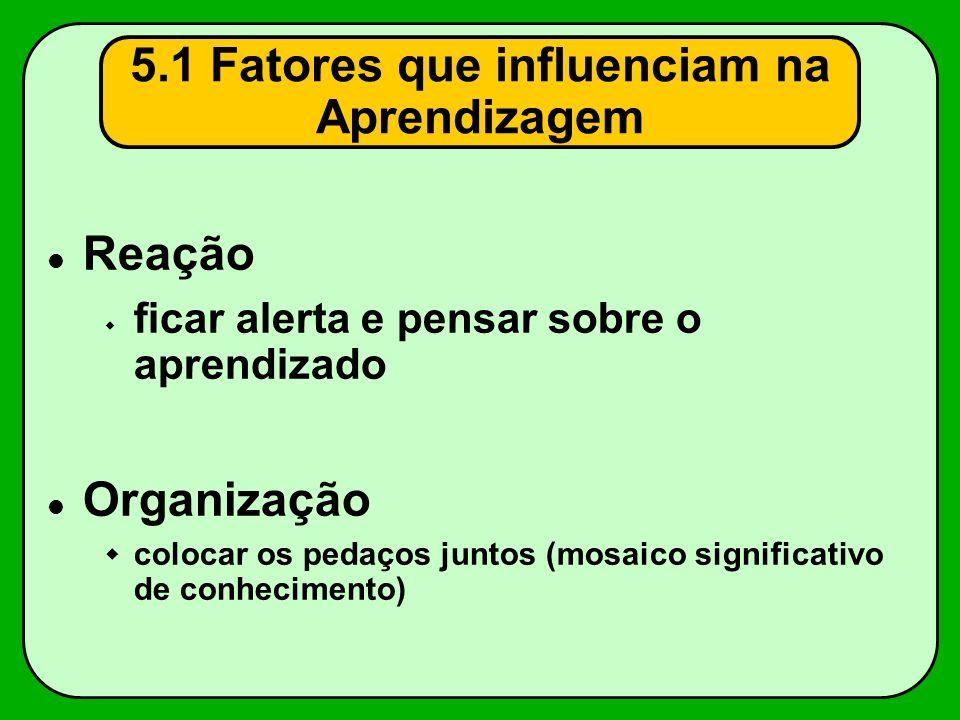 Reação ficar alerta e pensar sobre o aprendizado Organização colocar os pedaços juntos (mosaico significativo de conhecimento) 5.1 Fatores que influen