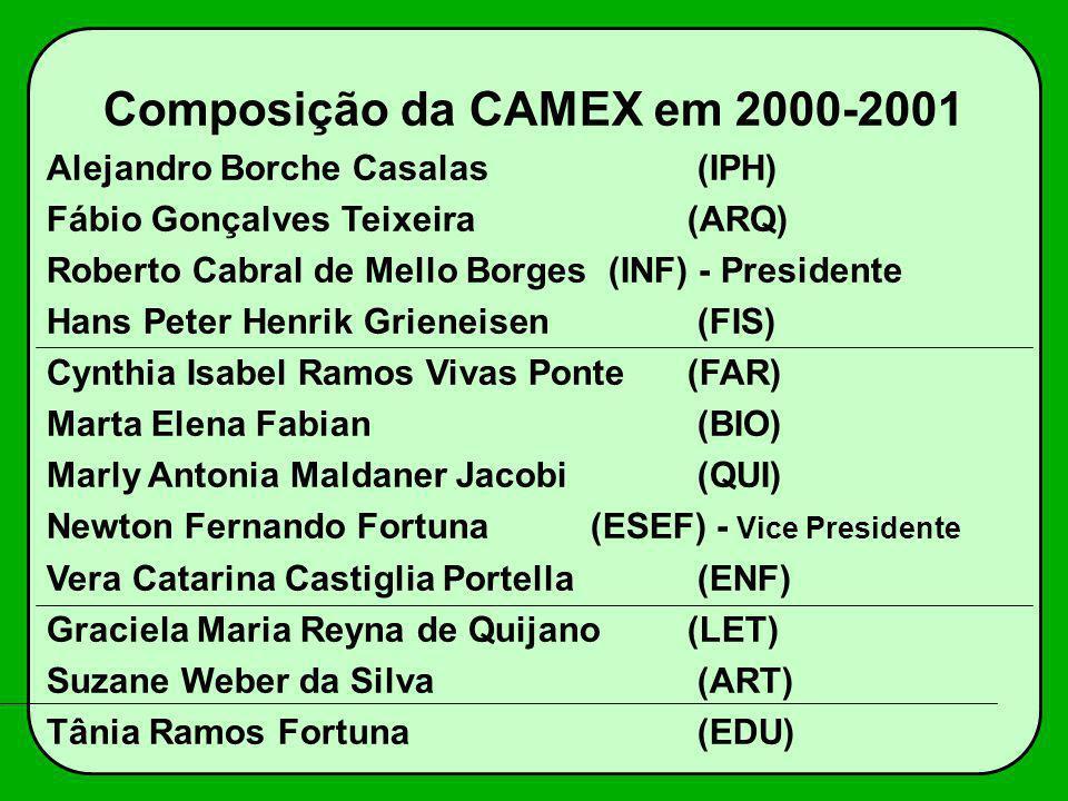 Composição da CAMEX em 2000-2001 Alejandro Borche Casalas (IPH) Fábio Gonçalves Teixeira (ARQ) Roberto Cabral de Mello Borges (INF) - Presidente Hans