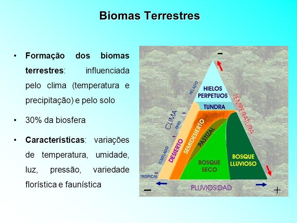 Biomas Terrestres Formação dos biomas terrestres: influenciada pelo clima (temperatura e precipitação) e pelo solo 30% da biosfera Características: va