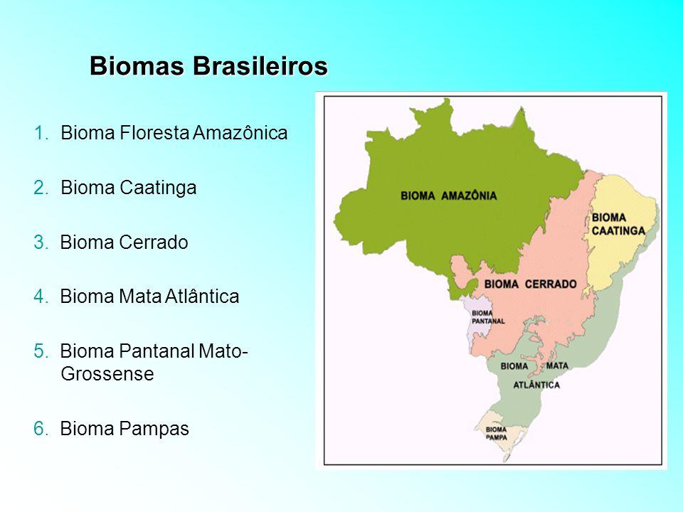 Biomas Brasileiros 1.Bioma Floresta Amazônica 2.Bioma Caatinga 3. Bioma Cerrado 4. Bioma Mata Atlântica 5. Bioma Pantanal Mato- Grossense 6. Bioma Pam