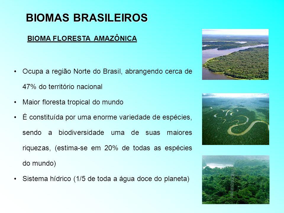 BIOMAS BRASILEIROS Ocupa a região Norte do Brasil, abrangendo cerca de 47% do território nacional Maior floresta tropical do mundo É constituída por u