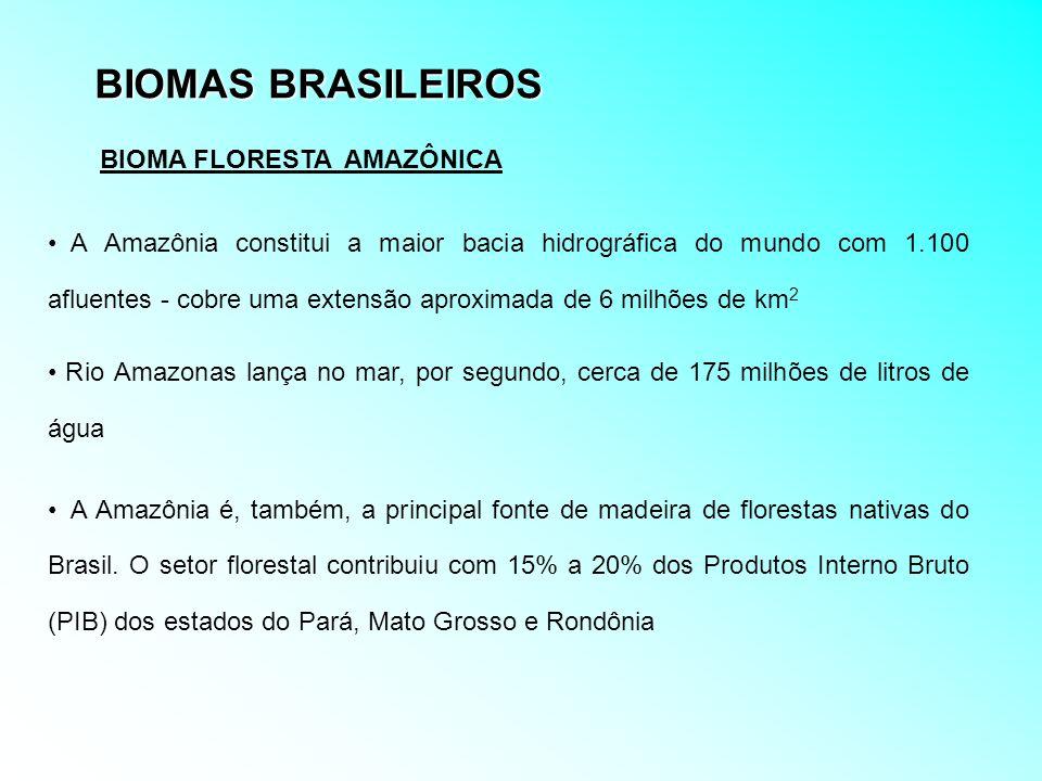 BIOMAS BRASILEIROS A Amazônia constitui a maior bacia hidrográfica do mundo com 1.100 afluentes - cobre uma extensão aproximada de 6 milhões de km 2 R
