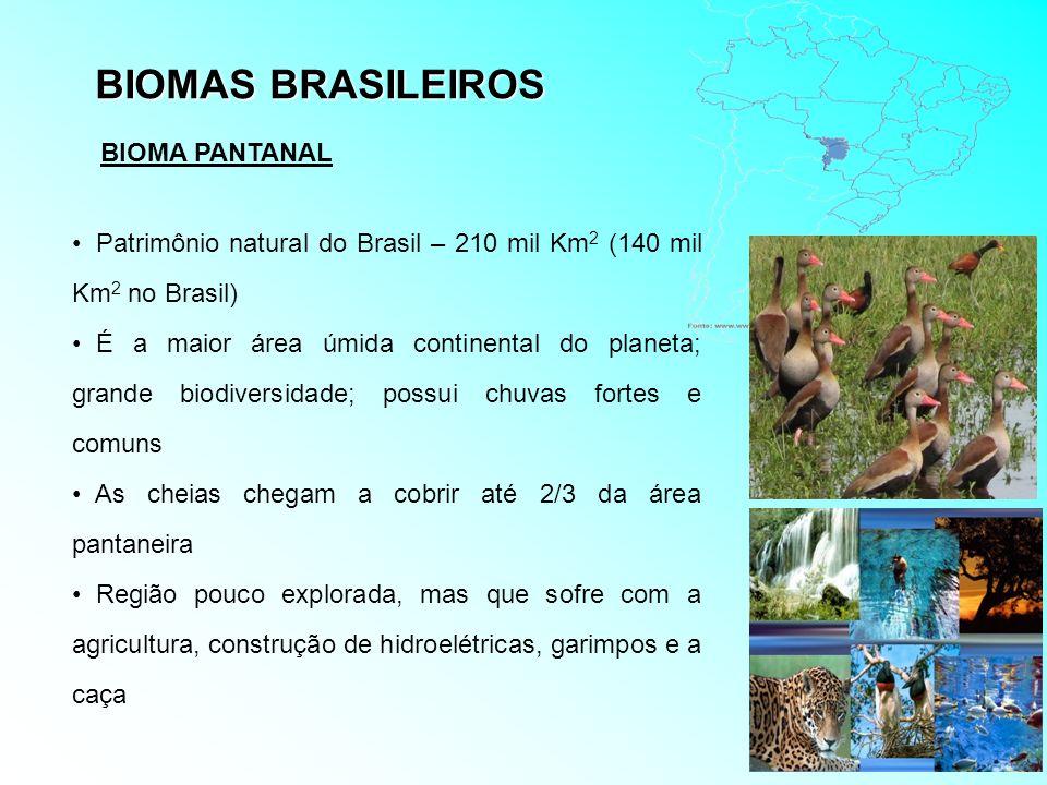 BIOMAS BRASILEIROS Patrimônio natural do Brasil – 210 mil Km 2 (140 mil Km 2 no Brasil) É a maior área úmida continental do planeta; grande biodiversi
