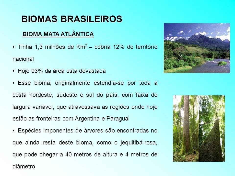 BIOMAS BRASILEIROS Tinha 1,3 milhões de Km 2 – cobria 12% do território nacional Hoje 93% da área esta devastada Esse bioma, originalmente estendia-se