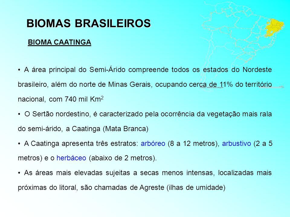 BIOMAS BRASILEIROS A área principal do Semi-Árido compreende todos os estados do Nordeste brasileiro, além do norte de Minas Gerais, ocupando cerca de
