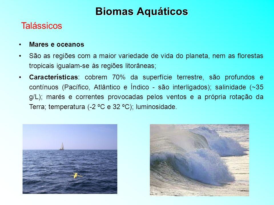 Biomas Aquáticos Mares e oceanos São as regiões com a maior variedade de vida do planeta, nem as florestas tropicais igualam-se às regiões litorâneas;