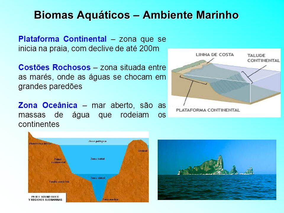Biomas Aquáticos – Ambiente Marinho Plataforma Continental – zona que se inicia na praia, com declive de até 200m Costões Rochosos – zona situada entr