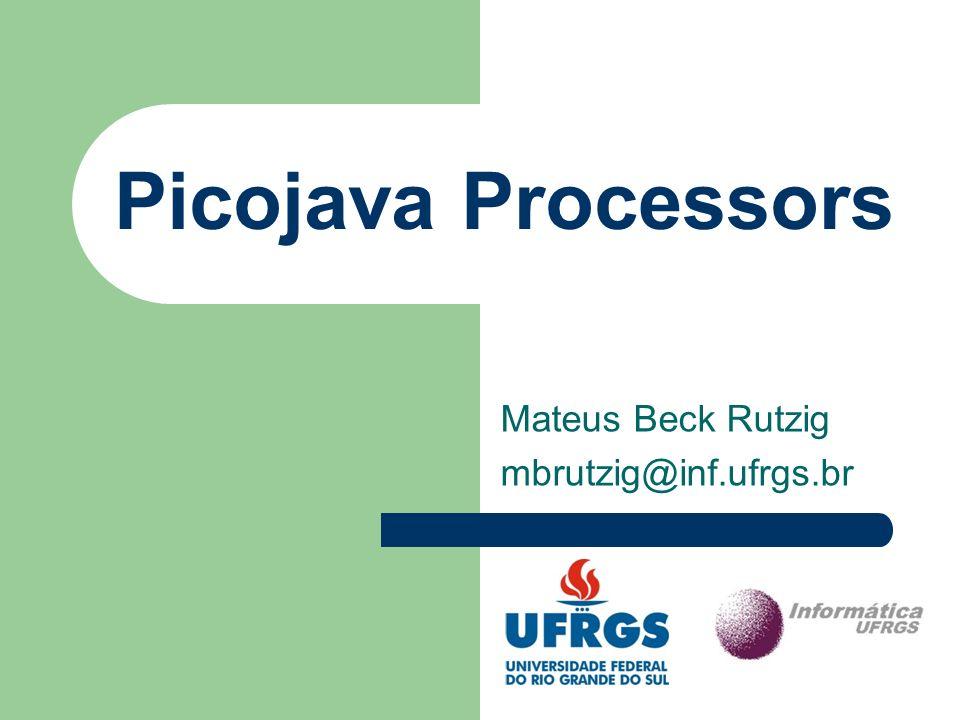Picojava II – Características Herda diversas características do Picojava I.